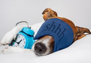 There are many strategies to help you get better sleep.